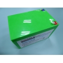 12.8V 12Ah LiFePo4 battery replacement 12V 12Ah sealed lead acid AGM battery